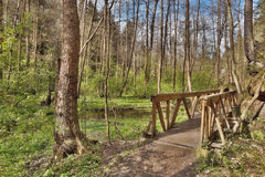 Nuova passerella di legno nella valle di Peklo di primavera nel kraj ceco di Machuv di zona turistica Fotografie Stock