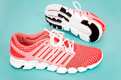 Nuova scarpa da corsa, scarpa da tennis o istruttore arancio e bianca sulle sedere blu Immagine Stock