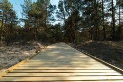 Nuova strada di legno che conduce dalla spiaggia del golfo del Mar Baltico con la sabbia bianca alla foresta della duna con i pin immagine stock