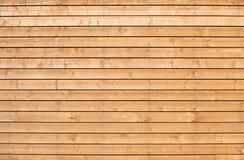 Nuova struttura di legno non colorata del fondo della parete Fotografia Stock Libera da Diritti