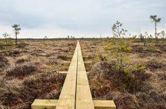 Nuova traccia di escursione di legno Fotografia Stock Libera da Diritti