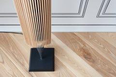Nuove colonne musicali moderne fatte di legno e di metallo come fonte di suono puro in sole Fotografie Stock