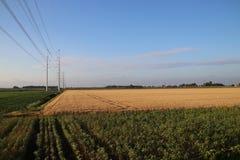 Nuove linee elettriche nel ploder a Bleiswijk che si dirige a Leida come componente dell'anello 380Kv nei Paesi Bassi fotografia stock