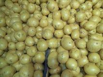 Nuove patate lavate fresche del raccolto immagini stock