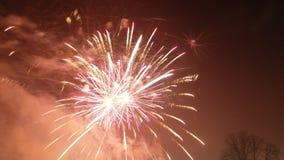 Nuovi anni di fuochi d'artificio Immagini Stock Libere da Diritti