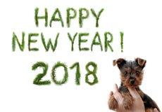 2018 nuovi anni Due mila diciotto Saluti del buon anno Piccolo cucciolo sveglio in mani femminili Le parole sono fatte di un pino Fotografia Stock Libera da Diritti