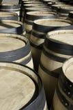 Nuovi barilotti del nuovo vino memorizzati nelle righe Immagini Stock