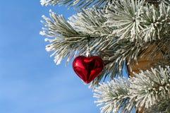 Nuovo anno. Fotografie Stock Libere da Diritti