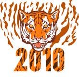 Nuovo anno 2010 anni della tigre Fotografie Stock