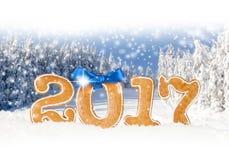 Nuovo anno 2017 Fotografie Stock