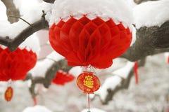 Nuovo anno cinese Fotografie Stock
