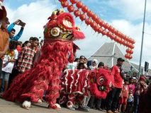 Nuovo anno cinese fotografia stock libera da diritti