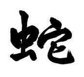 Nuovo anno cinese 2013, calligrafia Fotografie Stock