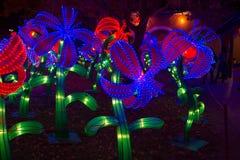 Nuovo anno cinese cinese del nuovo anno di festival di lanterna Fotografia Stock