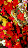 Nuovo anno cinese fortunato Fotografia Stock Libera da Diritti
