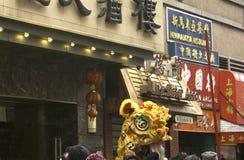 Nuovo anno cinese; New York City Fotografia Stock Libera da Diritti