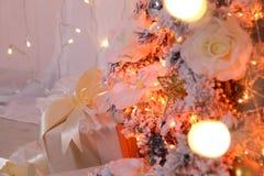 Nuovo anno del regalo Fotografie Stock