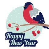 Nuovo anno e ciuffolotto di Buon Natale Immagini Stock