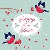 Nuovo anno e ciuffolotto di Buon Natale Fotografie Stock