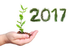 Nuovo anno sopportato Immagini Stock