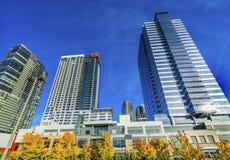Nuovo Bellevue Washington Tall Buildings Autumn Leaves Immagini Stock Libere da Diritti