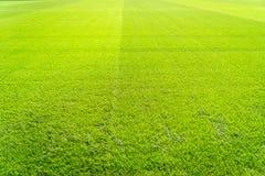 Nuovo campo da giuoco di nuova struttura naturale dell'erba verde Fotografie Stock Libere da Diritti