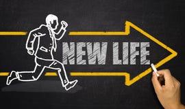 Nuovo concetto di vita Immagini Stock