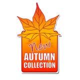 Nuovo contrassegno dell'accumulazione di autunno con il foglio Fotografia Stock
