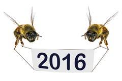 Nuovo felice, 2016, anno! Fotografia Stock