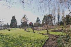 Nuovo giardino immagine stock