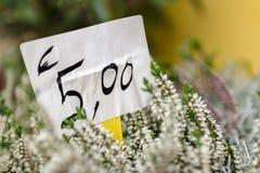 Nuovo prezzo Fotografie Stock
