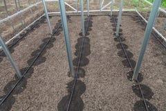 Nuovo sistema dell'irrigazione a goccia in serra Immagini Stock Libere da Diritti