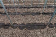 Nuovo sistema dell'irrigazione a goccia in serra Fotografie Stock Libere da Diritti
