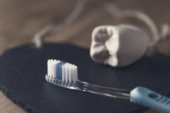 Nuovo spazzolino da denti blu con la muffa di un dente Fotografie Stock