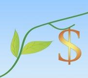 Nuovo sviluppo nell'economia degli S.U.A. Fotografia Stock Libera da Diritti