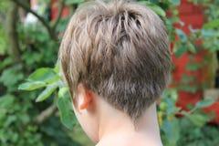 Nuovo taglio di capelli Fotografie Stock