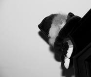 Nur Clown und sein Schatten Lizenzfreie Stockfotografie