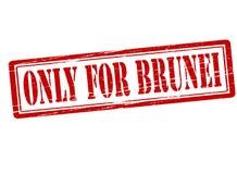Nur für Brunei stock abbildung