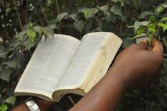 Nur Wort Gottes ist eine Quelle der Berechtigung stockbild