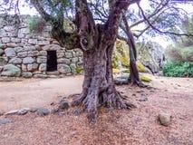 Nuraghe Albucciu, Arzachena, Cerdeña fotos de archivo libres de regalías