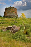 Nuraghe tower sardinia Italy. Nuraghe tower ruins and giant flower Sardinia Sardegna Italy archaeological remnants of prehistoric building of bronze age ancient Royalty Free Stock Photo
