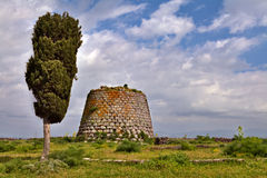 Nuraghe tower sardinia Italy bronze age ruin. Nuraghe tower ruins and pine tree Sardinia Sardegna Italy archaeological remnants of prehistoric building of bronze Royalty Free Stock Photo