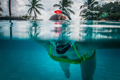 Nurek, Palmowy las, Barbados Fotografia Royalty Free