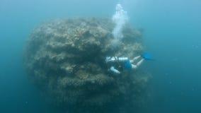 nurek rafy akwalung coral zbiory wideo