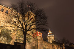 Nuremberg, Germany -  Imperial Castle- night scene Royalty Free Stock Photography