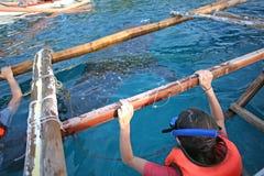 Nurkować wewnątrz podczas Wielorybiego rekinu dopatrywania Zdjęcia Royalty Free