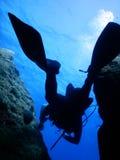 Nurkowy Śródziemnomorski Zdjęcie Royalty Free