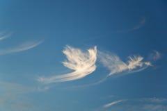 nurkująca kształtującą chmury Obraz Royalty Free