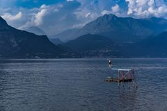Nurkujący w Como jeziorze, Włochy Zdjęcie Stock