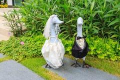 Nurkuje lalę w ślubnej sukni I smokingu w ogródzie Obraz Royalty Free